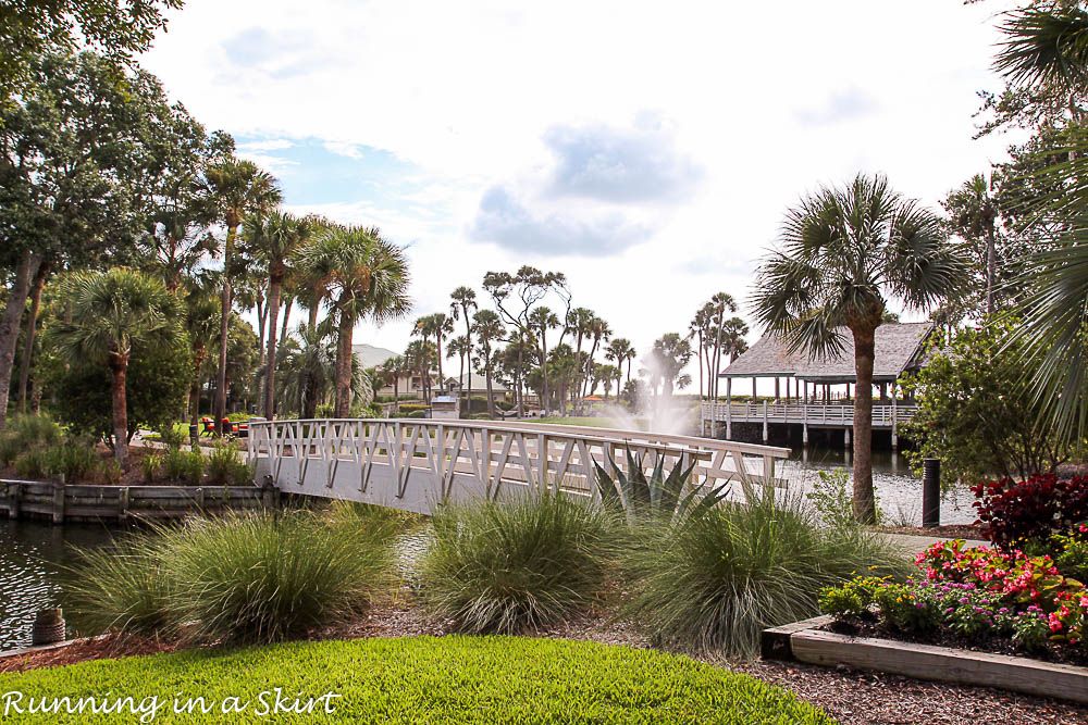 Things to Do Hilton Head