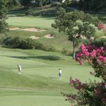 branson-golf-green-course