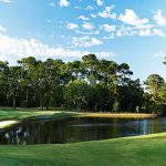 Heron Pointe Pete Dye Course Hole 4 Sea Pines Resort Hilton Head Island Golf